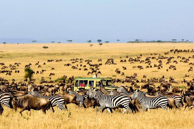 9 Days 8 Nights Kidepo Valley National Park